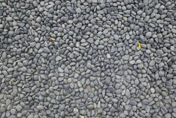 Stones can be used in many ways, including as a path.