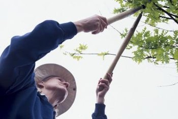 Loppers are pruning shears with long handles, for cutting hard-to-reach branches.