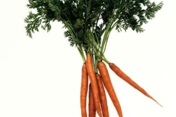 Carrots that have gone to seed are safe to eat, but tasteless.