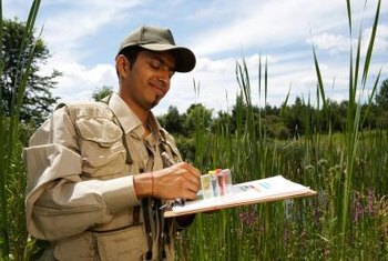 Environmental and conservation scientists may work in the field, or in an office, lab or classroom.
