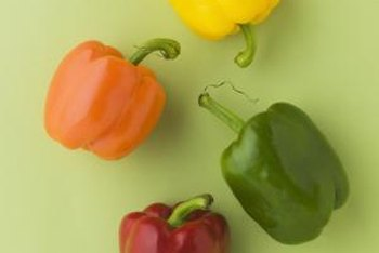 Seed catalogs offer a wide variety of bell peppers to choose from.