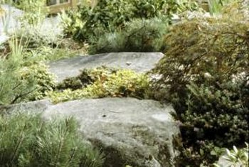 Use landscape rock strategically in your garden.