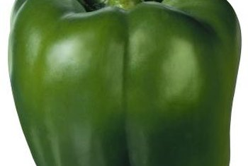 Make sure your bell peppers stay healthy and happy.