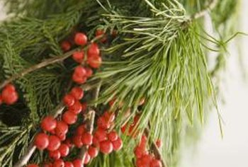 Bright berries tucked into evergreen boughs are a counterpoint to filmy tulle.
