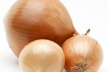 Large onion bulbs grow best from seedlings.