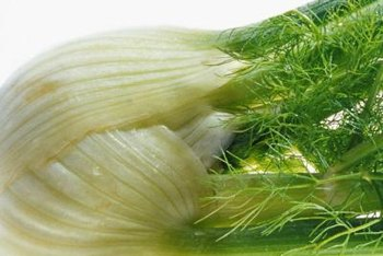 Fennel's licorice-like flavor pairs well with quinoa.