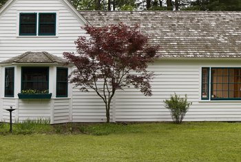 Shiplap siding can be painted or stained.