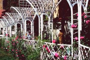 The open-weave design of a trellis is well-suited for wet as well as dry areas.