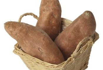 You can grow yams in the home garden for novelty or food.
