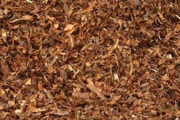 Organic mulch can add nutrients to the soil as it decomposes.
