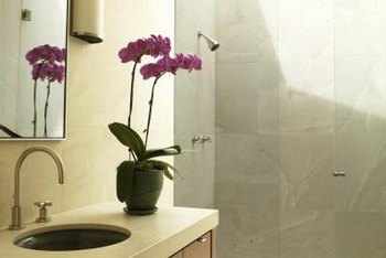 Place an orchid houseplant in indirect sunlight to avoid sunburn.