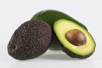 Save the seeds from your avocados and grow them into attractive plants.