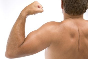 Including biceps during a workout promotes increases in strength and muscle size.