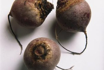 Eating beets is known to boost the level of folate in expectant mothers.