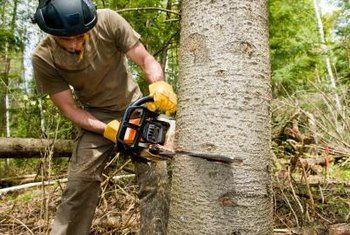 Fill your chainsaw with oil and gas before each use.