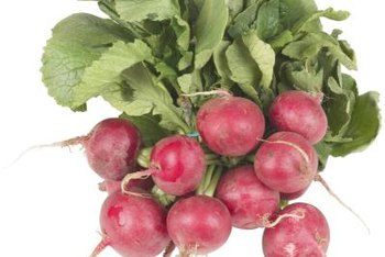Both radish roots and greens are edible.