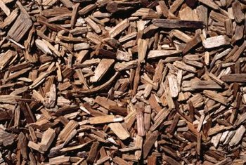 Wood chips have a carbon-to-nitrogen ratio of 600 to 1.