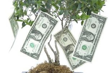 Nonprofits must budget carefully because donations don't grow on trees.