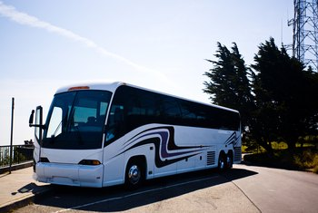Party buses vary in size, from small vans to large passenger buses.