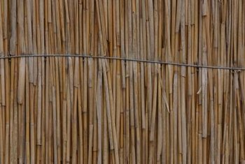 Reed fencing is flexible but sturdy.