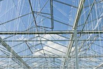 Unlike traditional glass greenhouses, polyethylene-covered greenhouses are more economical and energy-efficient.