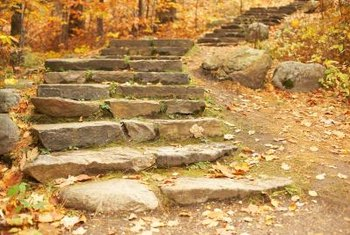 Stone steps without surrounding landscaping appear dull and risk erosion.