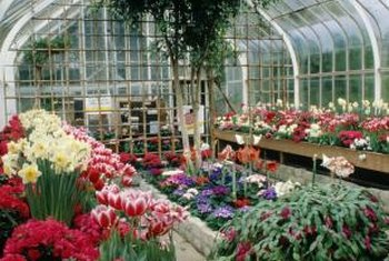 Plant nurseries typically rely heavily on greenhouses.