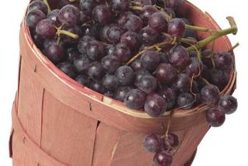 Muscadine grapes are thick-skinned with a musky taste.