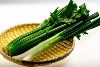 Celery belongs to the carrot family, Umbelliferae.