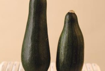 Allow zucchini to ripen on the vine to harvest the seeds.