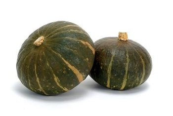 "The term ""kabocha"" is Japanese for winter squash."