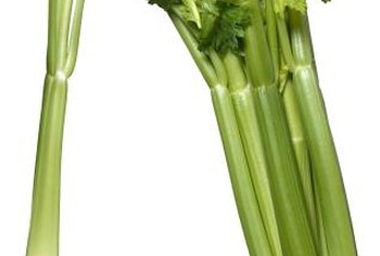 Although challenging, it's not impossible to grow celery in warmer regions.