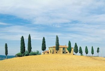 The Tuscan color palette is inspired by its landcapes.