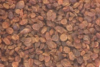 The California Raisin Marketing Board helps drive consumer demand for raisins.