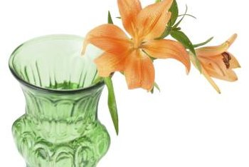 Grow your lilies indoors if necessary to keep them away from aphids.