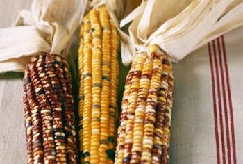 Ornamental corn is used for everything from table arrangements to decorative brooms to fall-time corn mazes.