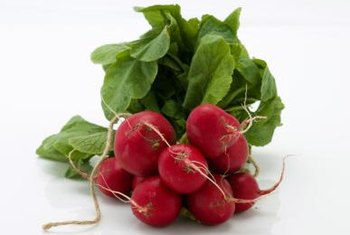 Root vegetables like radishes grow well in dirt or sand.