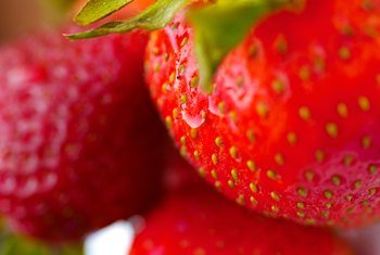 Strawberries are among the plants that reproduce using runners.