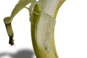 Less-ripe banana peels aren't as limp as those on very ripe fruit.