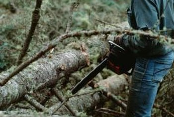Large broken tree limbs are quickly cut down to size with the right tools.