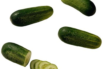 Pickling cucumbers are short and blocky.