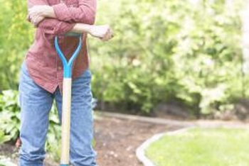 A garden fork can loosen soil without disrupting soil layers.
