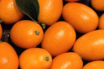 Bright-orange kumquats have edible rinds.