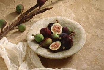 Harvest your home-grown figs in late summer.