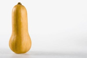 Butternut squash is a warm-weather vegetable that takes about 110 days to mature.