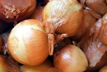 These jumbo-sized onions have a mild, sweet taste.