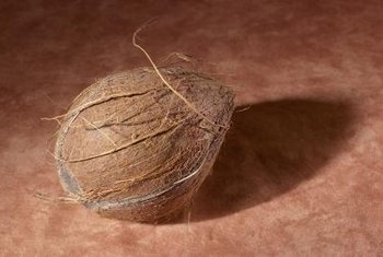Coconuts play an unexpected role for alternative gardeners.