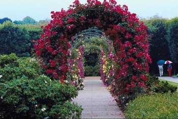 Re-create the explosive beauty of a garden arch with lights and silk flowers indoors.