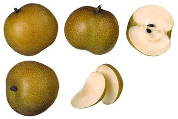 Asian pears are a popular backyard fruit.