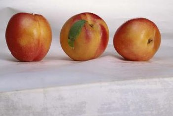 Panamint nectarines are medium sized and red-skinned with good flavor.